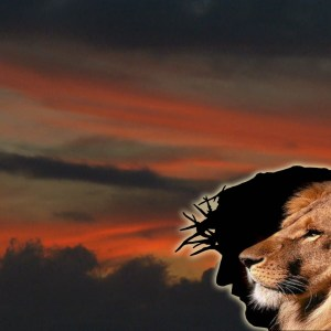 Lion and Christ Christian Animated Still A professional animated intro that's stops on a still image without continuous movements distraction