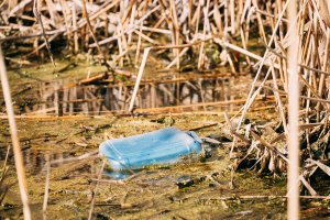 Old Plastic Canister Floats In Water Of Swamp Or Pond. Used Empt