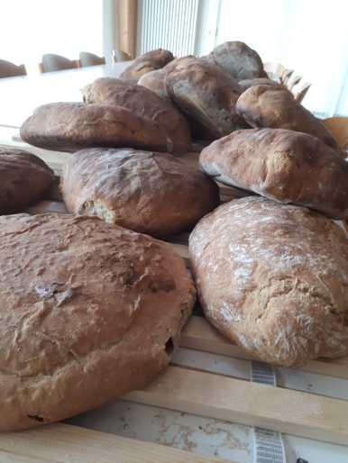 Brotbackaktion Brote