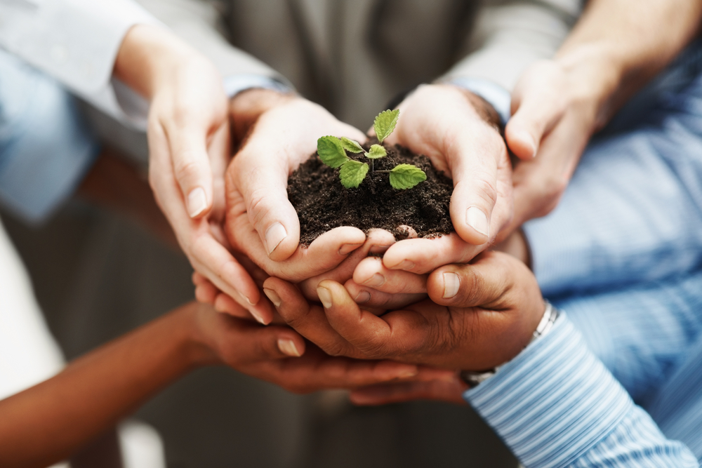 The Art & Spirit of Church Planter Assessments