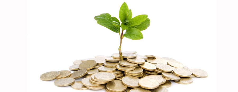 Stop Managing Your Church Plant and Start Investing Your Church Plant