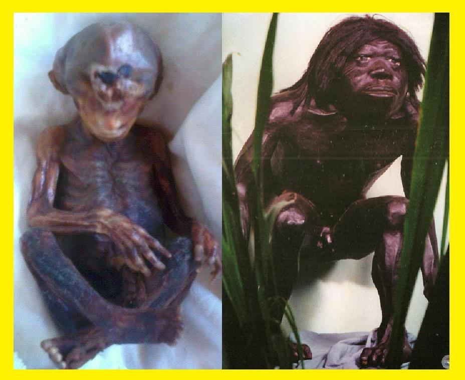 Insólito! Aquí está la foto del bebé fallecido del Pombero que violó y embarazó a una mujer en San Pedro.
