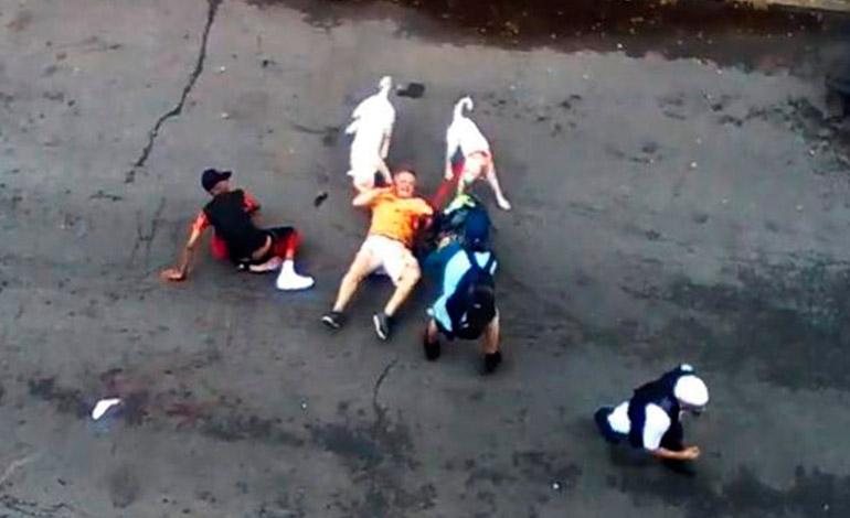 Muy fuerte video. Dos Pitbull destrozan a un hombre en plena calle de New York.