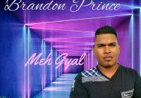 Meh Gyal By Brandon Prince (2019 Chutney Soca)