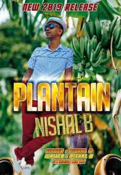 Plantain by Nishal B (2019 Chutney Soca)
