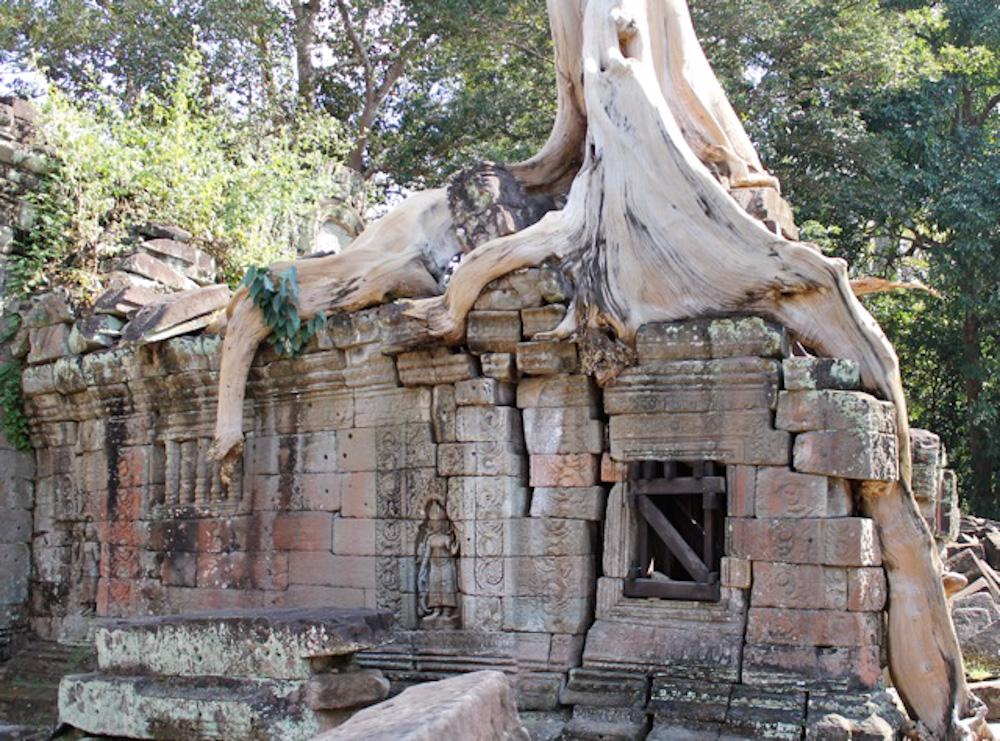Preah Khan Siem Reap Cambodia 2-3