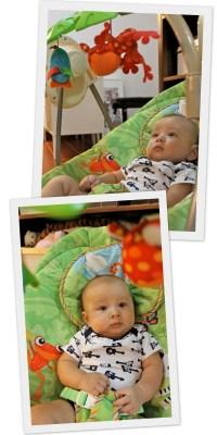 Baby Swing & Bouncer - Chuzai  Living