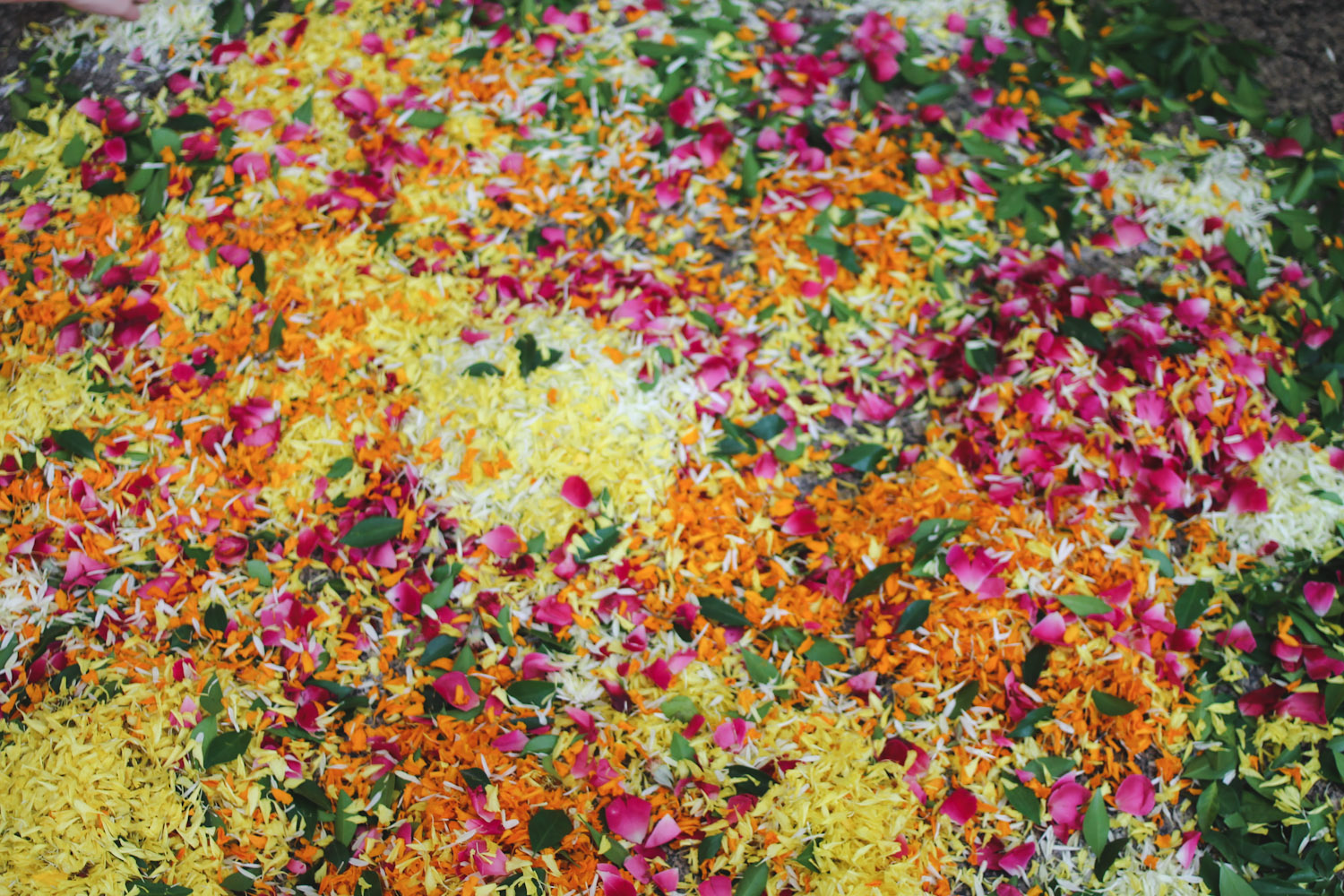 Flower Rangoli Making-12
