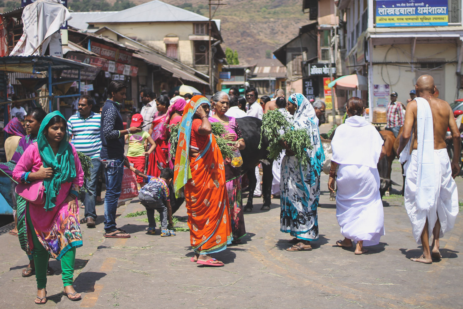 Trimbakeshwar Temple-12