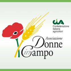 logobox_donne-in-campo-300x300