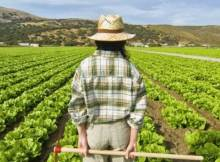 Giovani_agricoltori_3