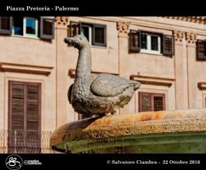 _d7d5871_bis_piazza_pretoria