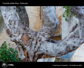 _D7D8635_bis_Castello_della_Zisa
