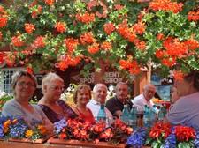 In mezzo ai fiori di Sinaia