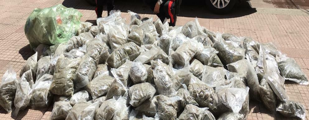 Trovati oltre 150 kg di stupefacente, arrestate due persone
