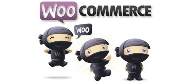 Woocommerce pour créer son site