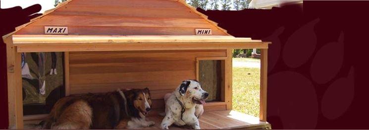 Cucce Per Cani Coibentate Accesori Cane Cucce Coibentate