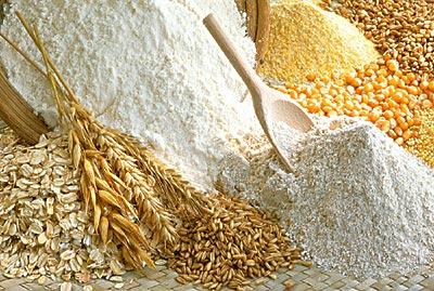Risultati immagini per grano e farina