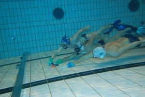 Week-end Sentez-vous Sports @ Ile de Nantes | Nantes | Pays de la Loire | France