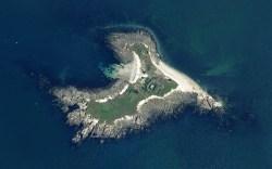 Rapport des inventaires de l'île Dumet 2013-2014