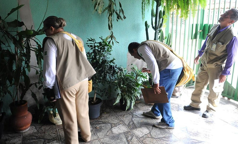 A partir do dia 29 Secretaria Municipal de Saúde inicia campanha contra o Aedes aegypti em Nova Olinda do MA