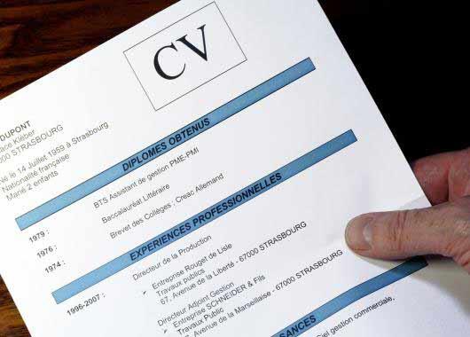 cidj cv pour job