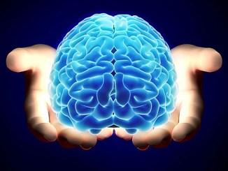 los cerebros de hombres y mujeres funcionan de manera diferente