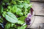 Verduras de hoja verde ayudan a disminuir el envejecimiento cognitivo