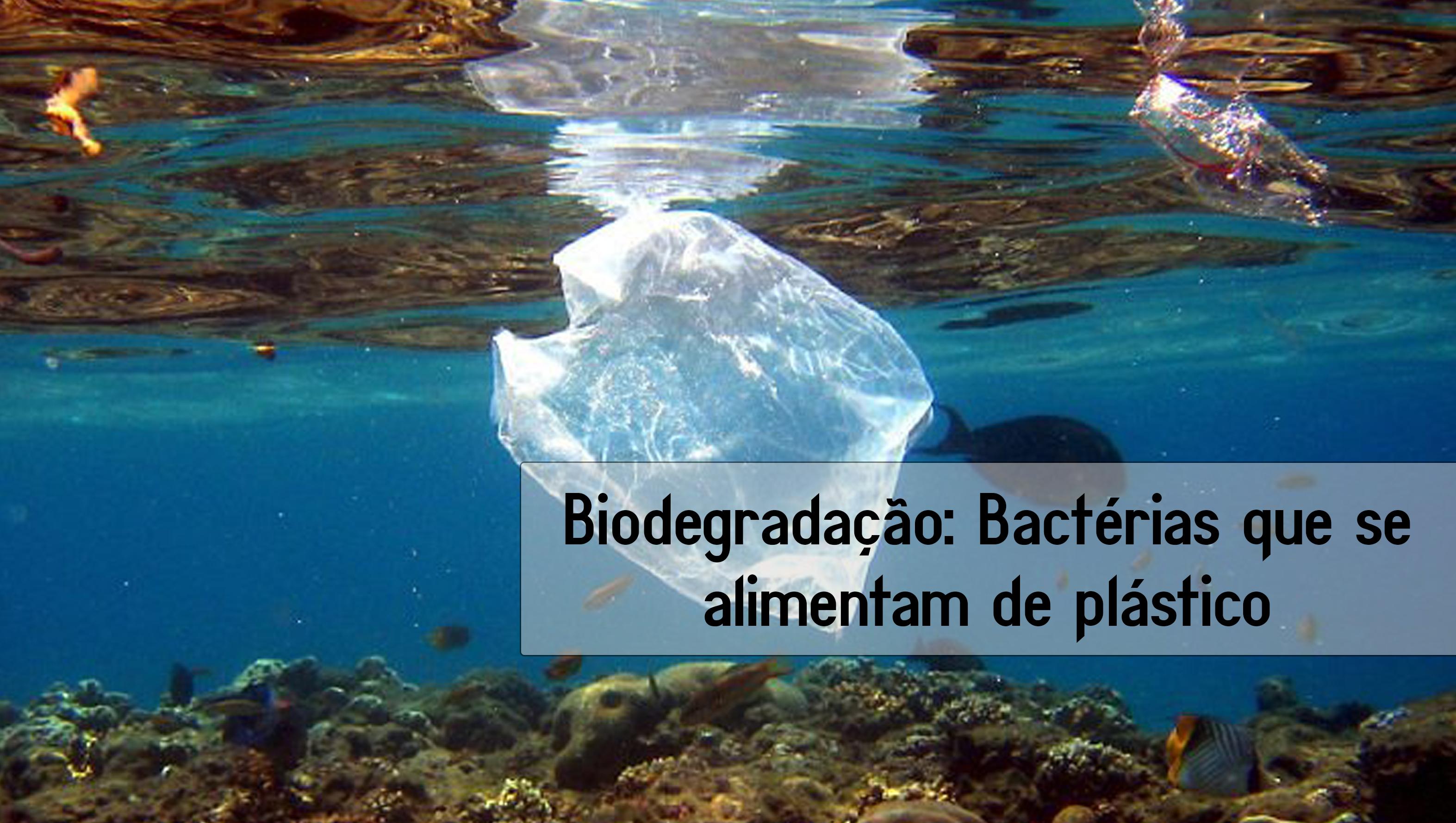 Biodegradação: Bactérias que se alimentam de plásticos