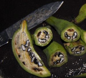 Bananas silvestres