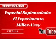 Experimento Miller-Urey