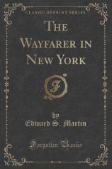 El Viajero en Nueva York