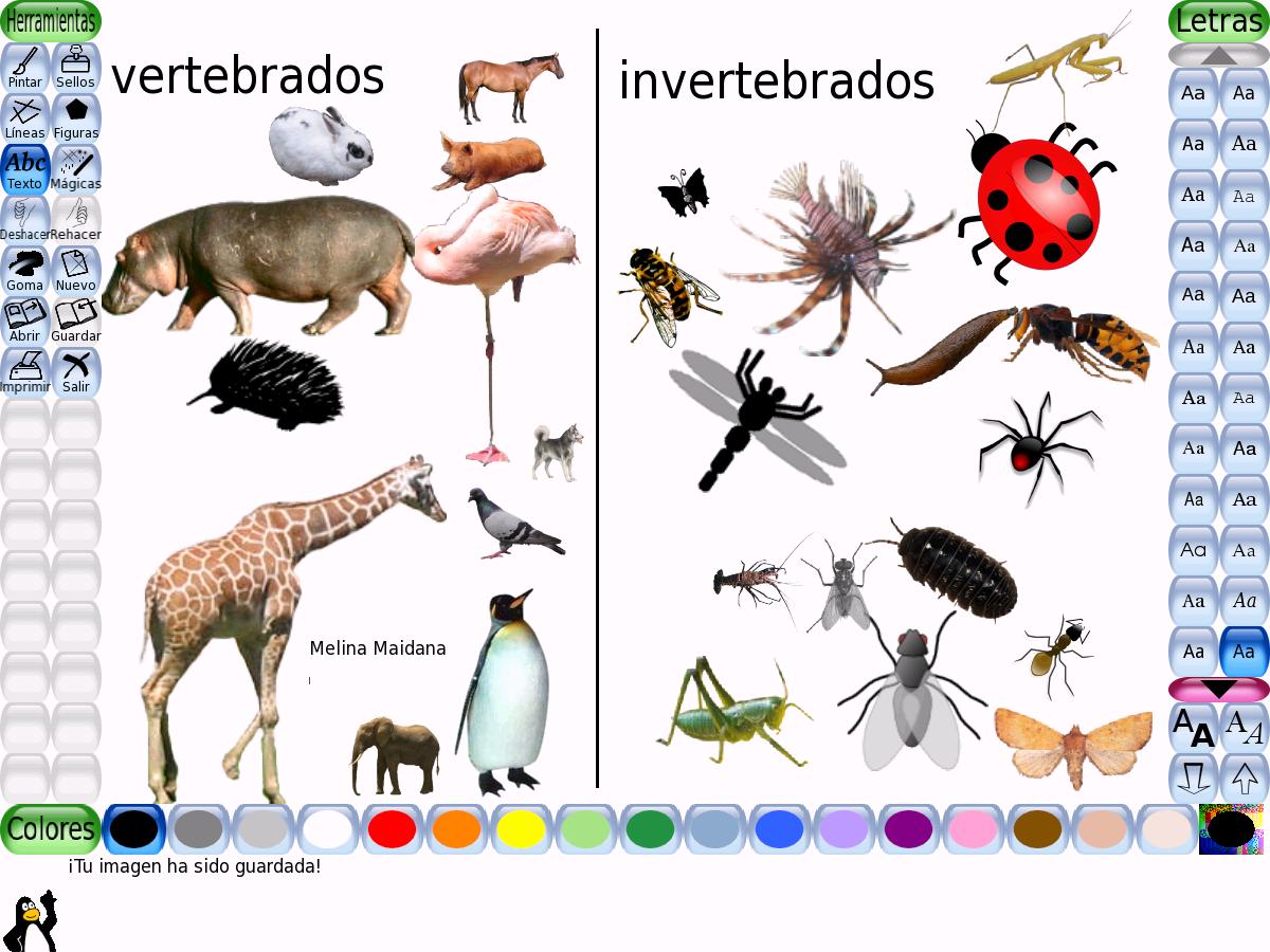 Vertebrados e Invertebrados | Ciencias Naturales Online