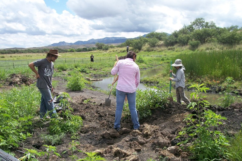 Volunteers working in the Cienega Watershed