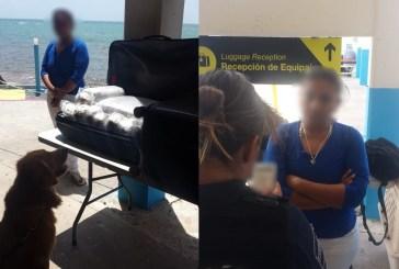 Asegura la Policía Federal 43 kilogramos de presunta marihuana en Playa del Carmen