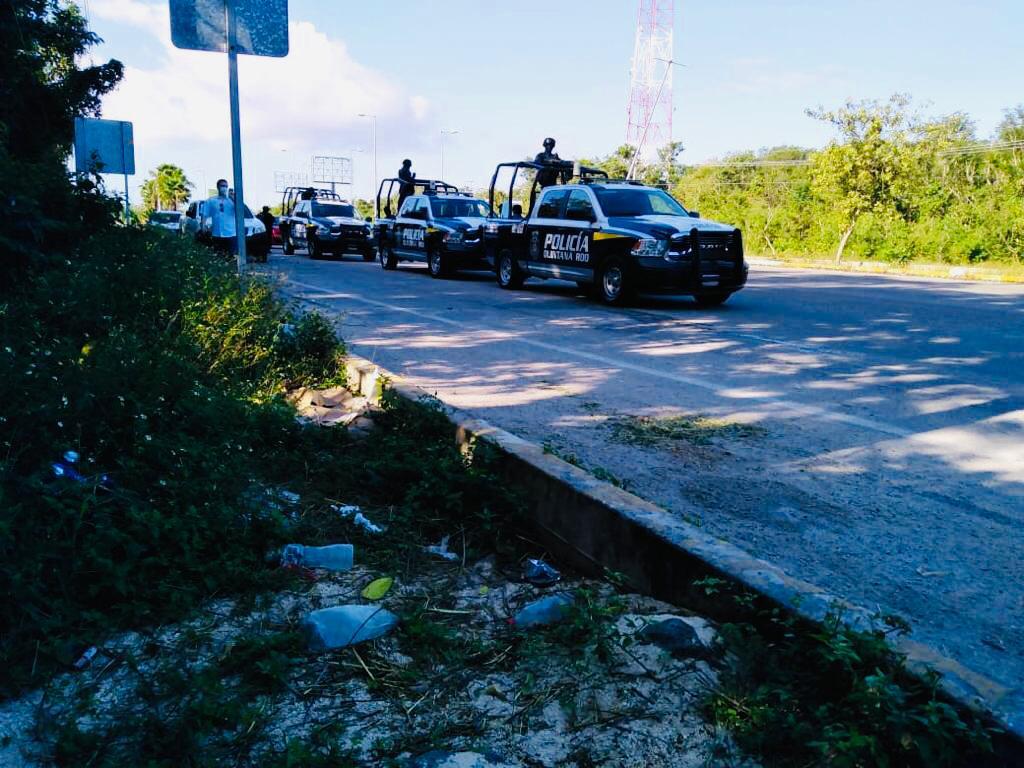 Policía recupera instalaciones de Croco Cun, hay varios animales muertos