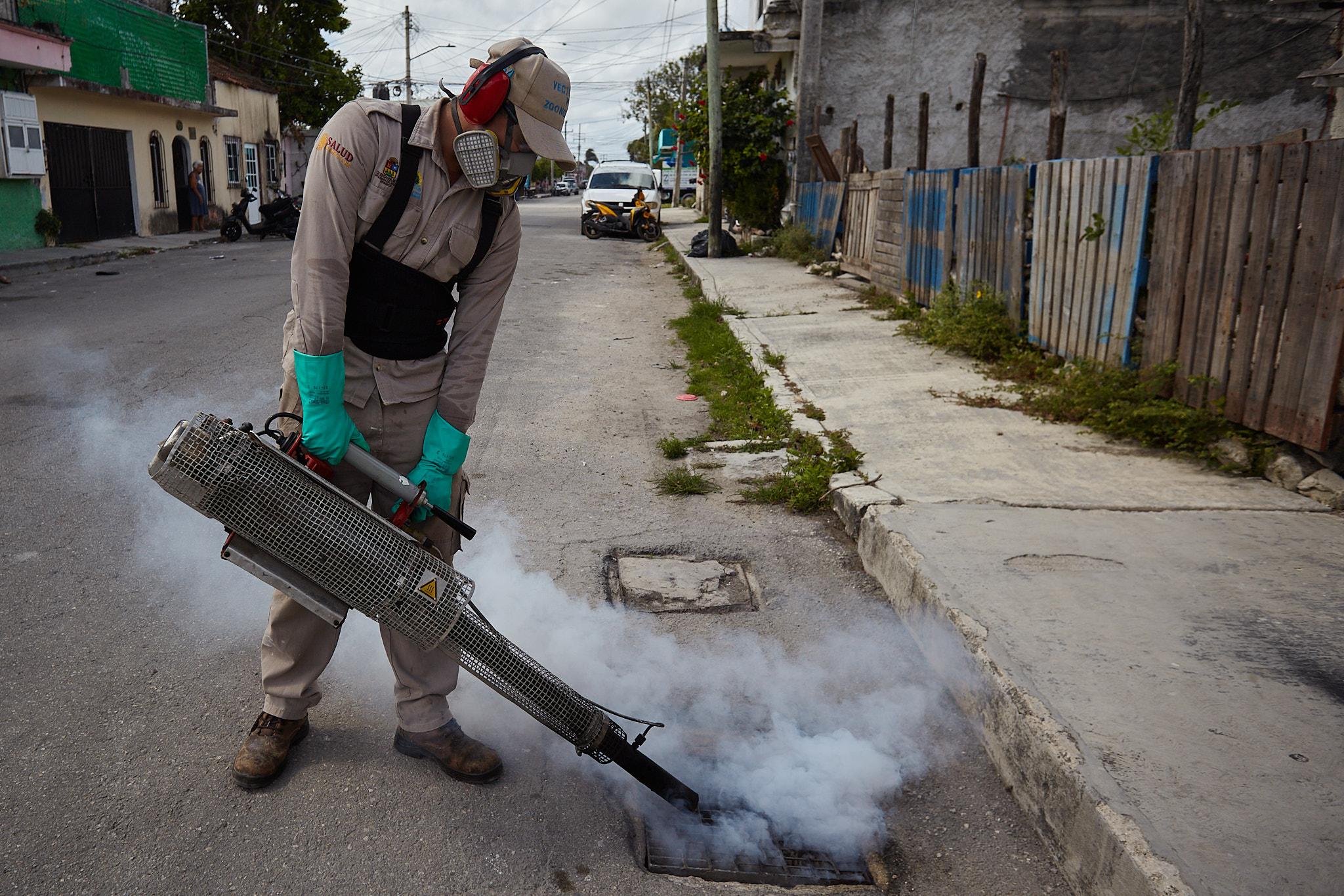 Refuerzan acciones para combatir el mosquito transmisor de dengue, zika y chikungunya