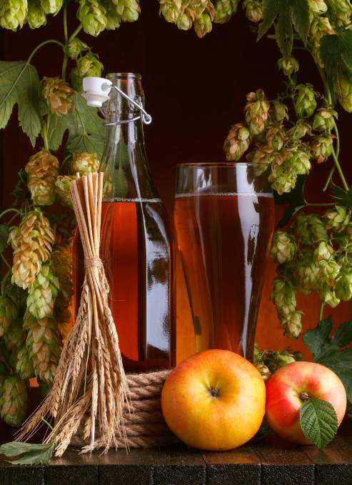 elma sirkesi faydaları say say bitmez çiftçiden eve