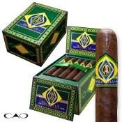 CAO Brazilia Gol (Box/20)
