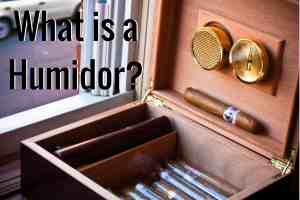 What is a humidor