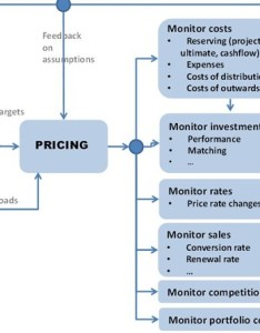 Source parodi pricing in general insurance also basic concepts and techniques of the process rh cii