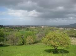 Obstgarten und Blick auf die Landschaft