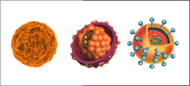 Hepatitis A -, Hepatitis B- (Gilead©), Hepatitis C-Virus (Roche©).htcms