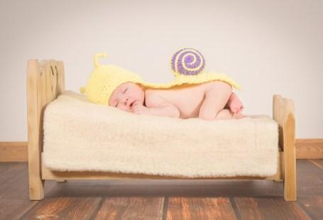 bebek 6.