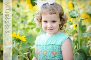 sunflowers-2231