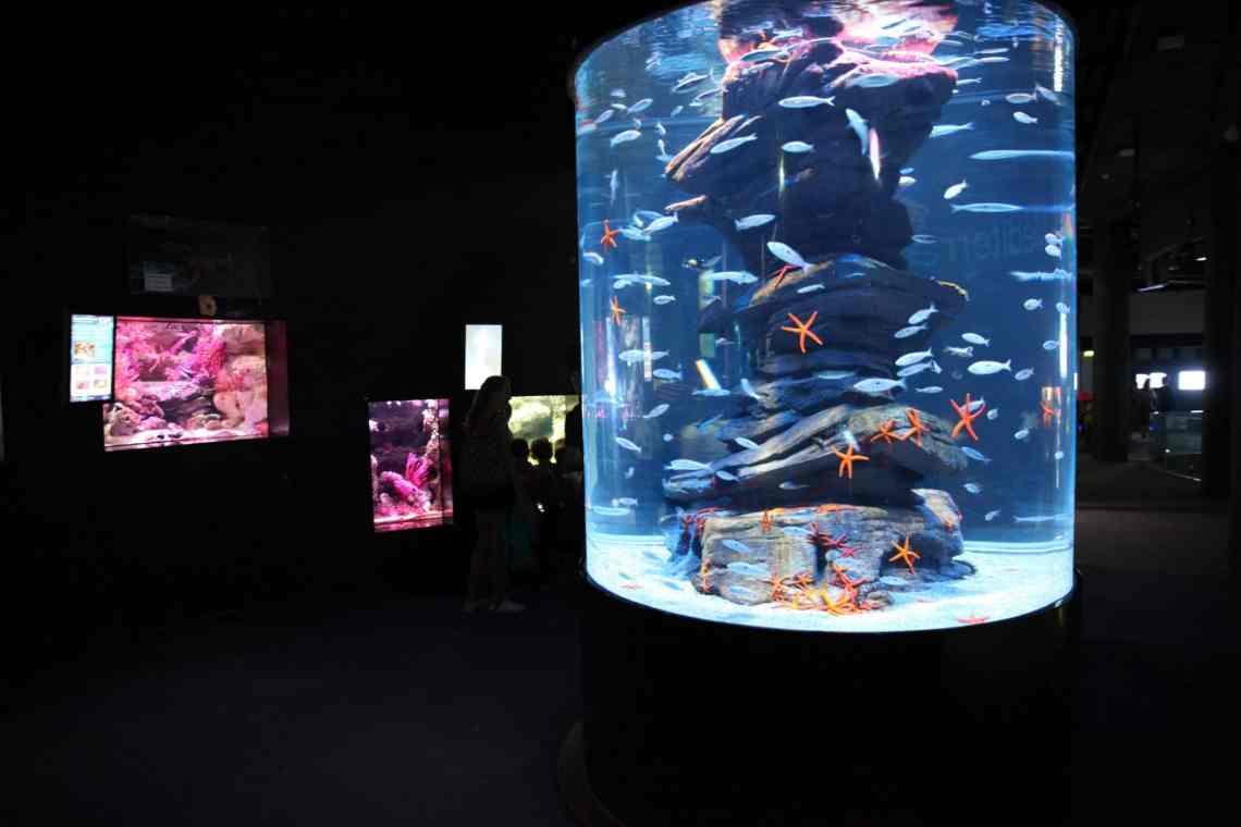 Parcours de visite - Aquarium de Paris