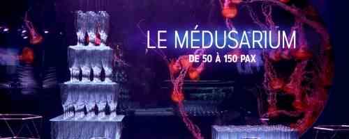 Le Médusarium - L'Aquarium de Paris