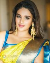 Nidhhi Agerwal (40)