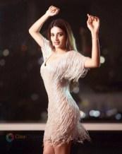 Nidhhi Agerwal (44)