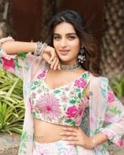 Nidhhi Agerwal (49)